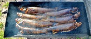 Сравниваем рыбу горячего и холодного копчения | Что лучше