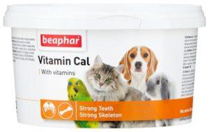 18 лучших витаминов для собак