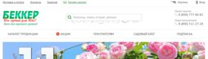 10 лучших интернет-магазинов семян и саженцев