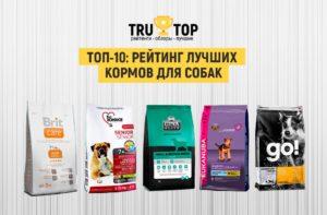 17 лучших супер-премиум кормов для собак