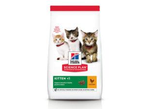 11 лучших кормов для котят