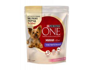 10 лучших кормов для собак мелких пород