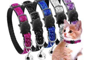 8 лучших ошейников для кошек