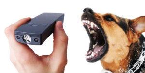 7 лучших отпугивателей собак
