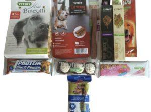 7 лучших лакомств для собак