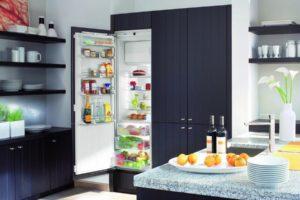 9 лучших встраиваемых холодильников по ттт‹ЂЉЋЊЉЂтттам пользователей