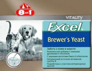 9 лучших витаминов для кошек