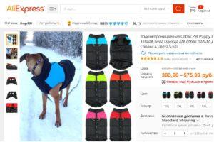 7 лучших брендов одежды для собак с АлиЭкспресс
