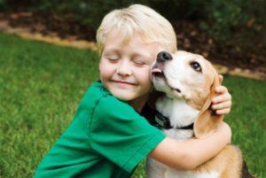 15 лучших пород собак для детей