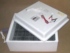 11 лучших бытовых инкубаторов