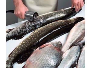 6 лучших рыбочисток