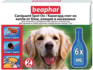 9 лучших капель от блох для собак