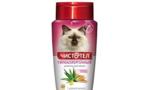 8 лучших шампуней для кошек