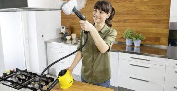 Как выбрать пароочиститель для дома