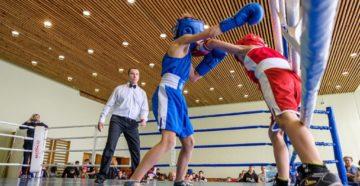 Сравниваем бокс и кикбоксинг   Что лучше