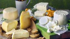 8 лучших греческих сыров